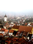 The view over Freiburg #1.